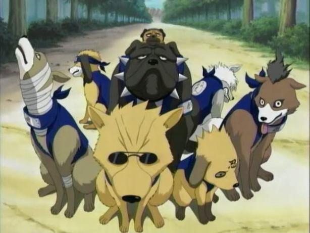 Kakashi's Ninja Hounds