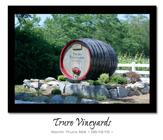 Truro Vineyard