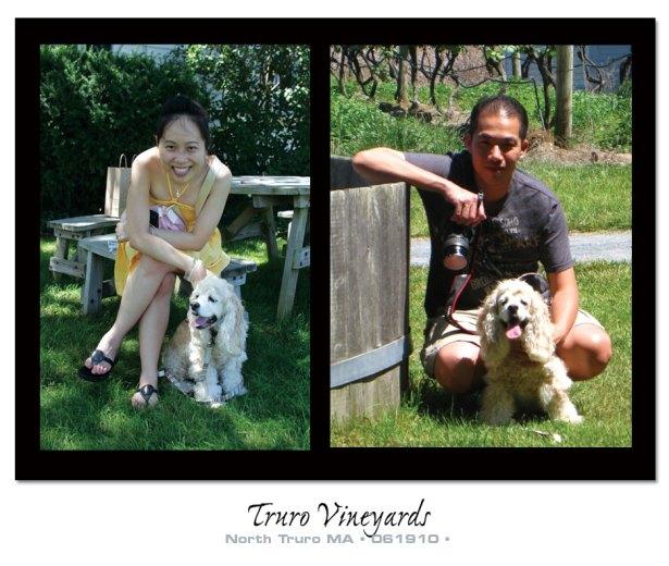 Truro Vineyard